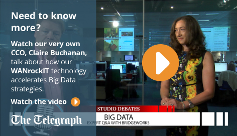 The Telegraph - Big Data: Crossing the Peak of Expectations Bridgeworks